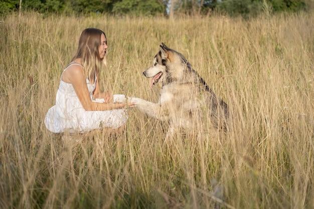 Kaukaski blond kobieta w białej sukni pociąg alaskan malamute psa w lato dziedzinie. daj łapę. miłość i przyjaźń między człowiekiem a zwierzęciem.