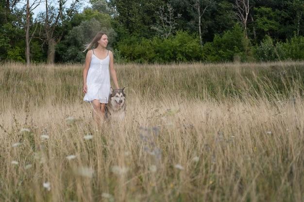 Kaukaski blond kobieta w białej sukni stoisko z psem alaskan malamute w lato polu. wietrzny dzień. miłość i przyjaźń między człowiekiem a zwierzęciem.
