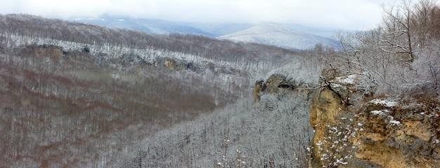 Kaukaz, panorama zimowego lasu na wzgórzach