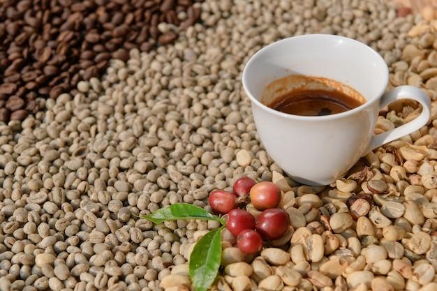 Kawa espresso w białej filiżance na tle to ziarno kawy arabica.