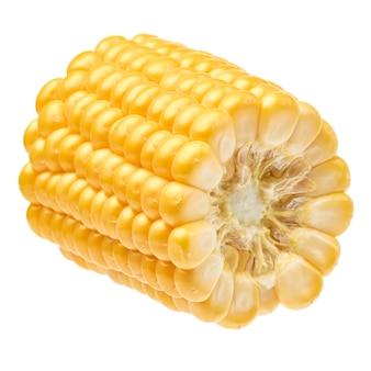 Kawałek kolby świeżej organicznej kukurydzy na białym tle