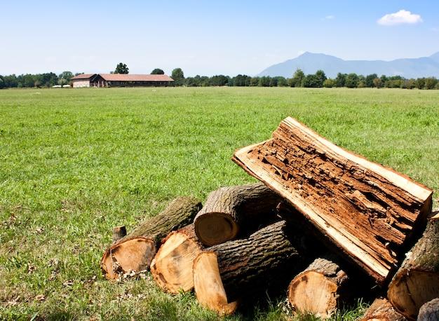 Kawałki drewna z miejscem na kopię, dobre do koncepcyjnego