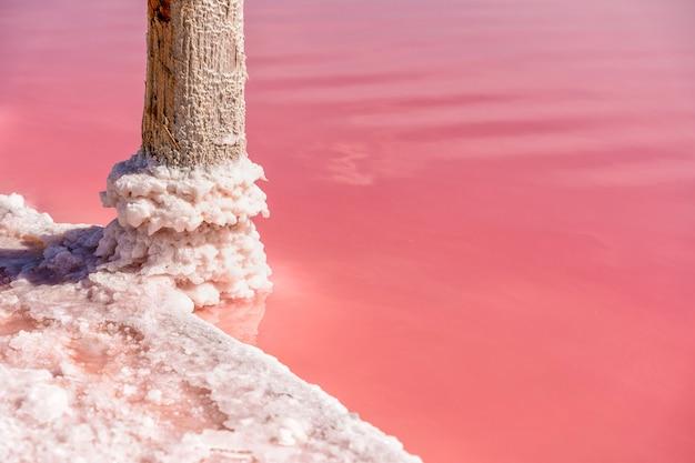 Kawałki soli na drewnianym patyku na różowym jeziorze wydobywanie soli dla usług medycznych i spa