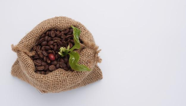 Kawowe fasole, kawowy kwiat i zieleni liście w konopianej workowej torbie odizolowywającej na bielu