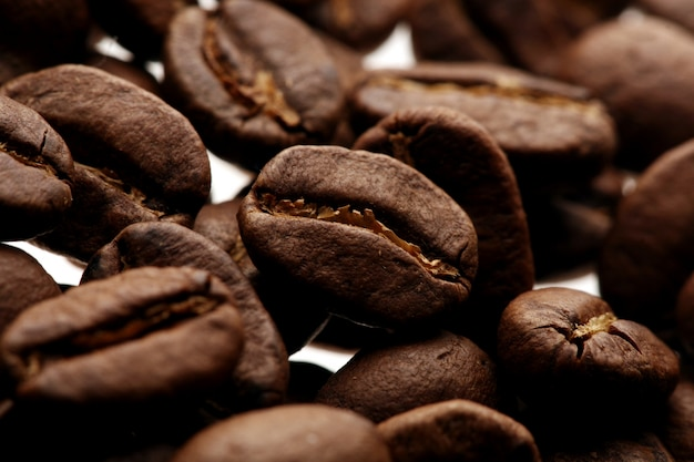 Kawowe fasole nad białym tłem