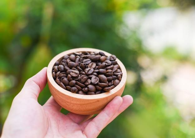 Kawowe fasole w drewnianym pucharze na ręce z natury zielenią