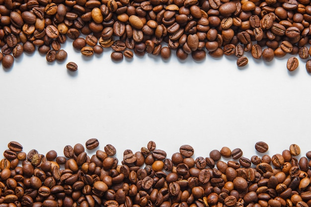 Kawowych fasoli odgórny widok na białej tło przestrzeni dla teksta