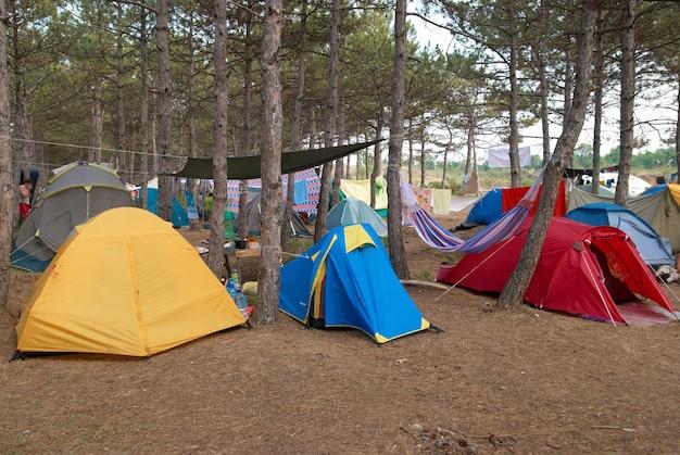 Kemping w lesie z wieloma namiotami