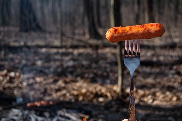 Kiełbasa smażona na ogniu w lesie wczesną wiosną