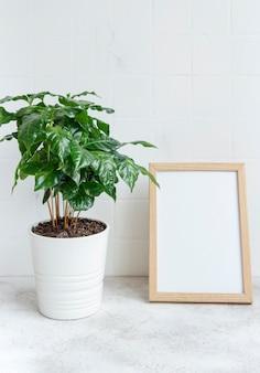 Kiełki drzewa kawowego w doniczce na stole i makiety ramki plakatowej