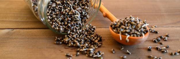 Kiełki nasion konopi żywności w drewnianą łyżką i szklanym słoju na drewnianym tle. transparent