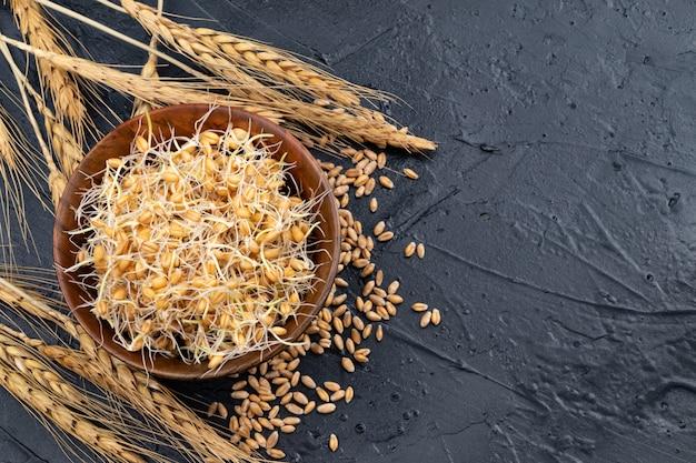 Kiełki pszenicy w drewnianej misce na szarym stole z kłosami pszenicy. zbliżenie.