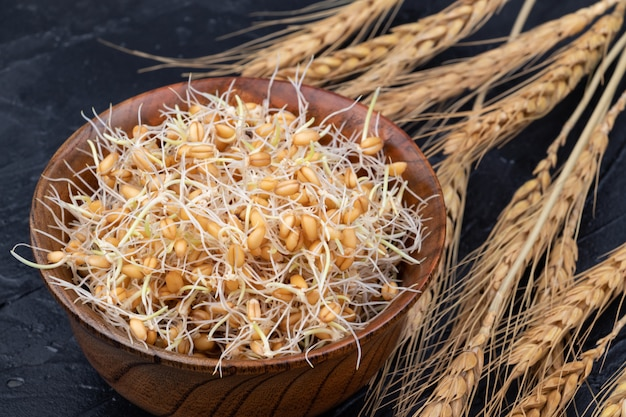 Kiełki pszenicy w drewnianej misce z kłosami pszenicy. zbliżenie