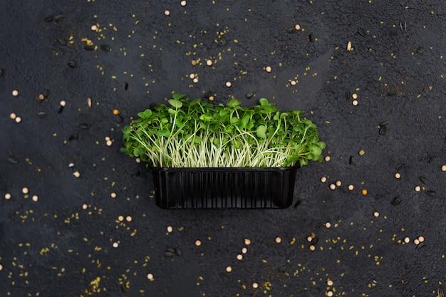 Kiełki warzywne rzodkiewka mikro