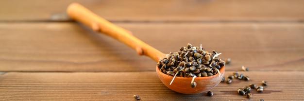 Kiełkowane nasiona konopi żywności w drewnianą łyżką na drewnianym tle. transparent
