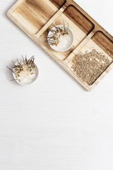 Kiełkowanie nasion pszenicy do jedzenia