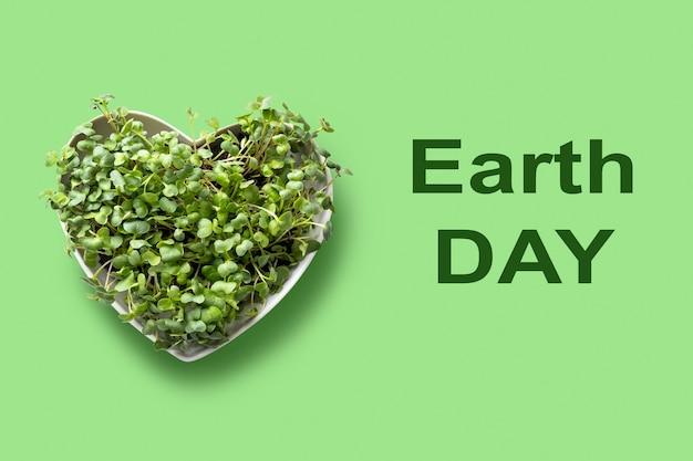 Kiełkujące microgreens rzodkiewki w talerzu w kształcie serca na zielonym widoku z powyższej koncepcji z tekstem ziemi