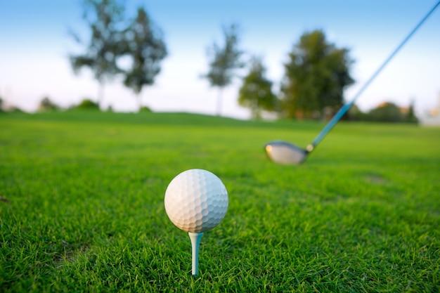Kierowca klubu piłeczki do golfa w polu zielonej trawy