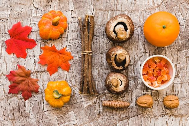 Kije i skład karmy jesiennej