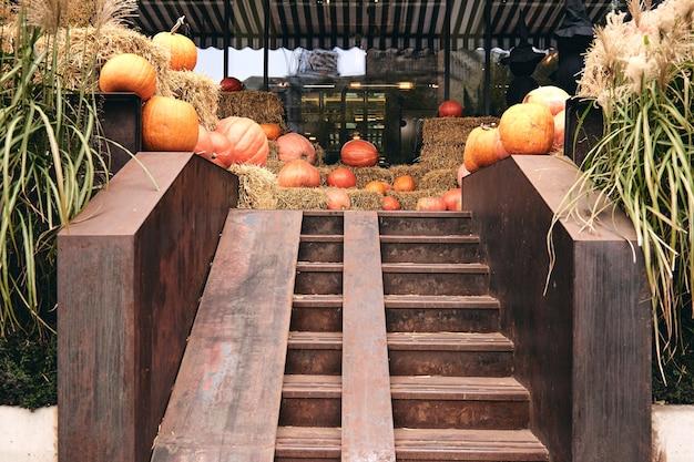 Kijów, ukraina - 20 października 2020 r. ozdobne dynie na targu rolnym stoją na snopach siana. święto dziękczynienia i halloweenowe straszne dekoracje z czarnymi wiedźmami. cukierek albo psikus dla dzieci.
