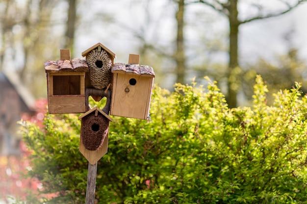 Kilka budek dla ptaków i karmnik dla ptaków w ogrodzie lub parku