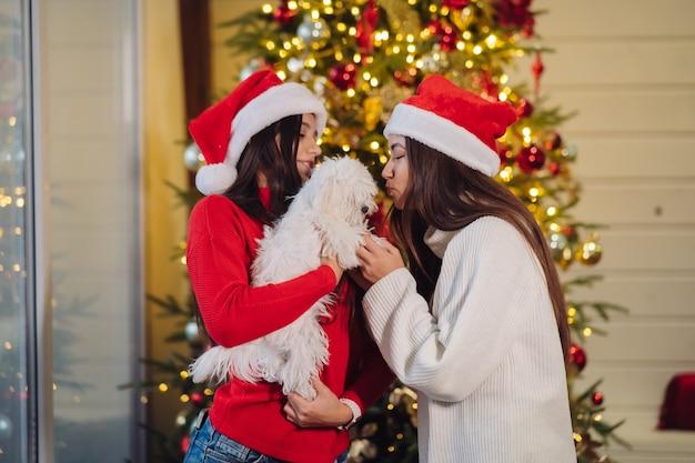 Kilka dziewcząt bawi się z małym psem w sylwestra w domu
