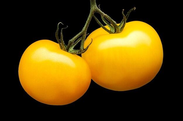 Kilka pysznych żółtych pomidorów na białym tle