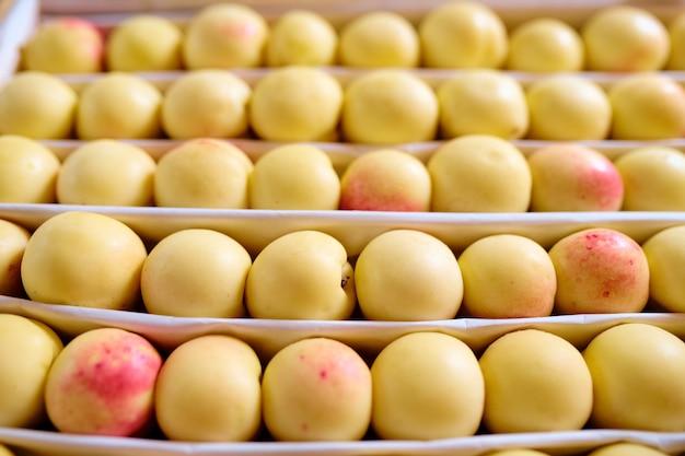 Kilka rzędów świeżych dojrzałych żółtych nektaryn lub moreli na wystawie owoców wewnątrz współczesnego supermarketu