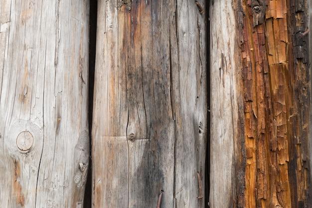 Kilka starych pękniętych, zaciemnionych kłód bez kory