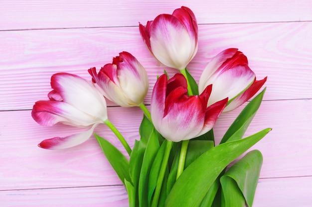 Kilka świeżych tulipanów na pastelowy różowy stół