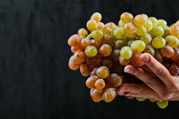 Kilka świeżych winogron w ręku na czarnym tle. wysokiej jakości zdjęcie
