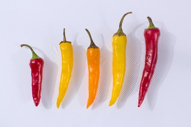Kilka wielokolorowych ostrych papryczek chili na jasnym tle