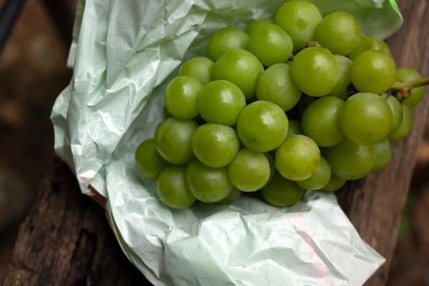 Kiść zielonych winogron na pergaminie.