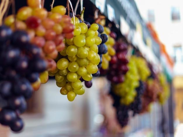 Kiście zielonych i niebieskich winogron w winnicy