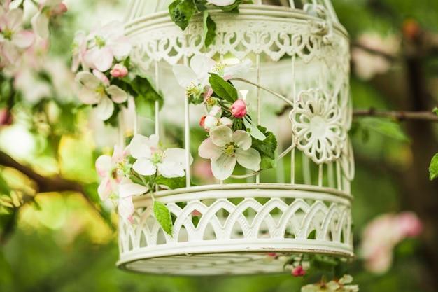 Klatka dla ptaków na drzewo kwiat jabłoni w zachód słońca.