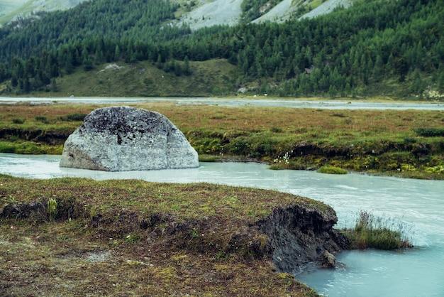 Klimatyczna górska sceneria z mleczną rzeką z błękitną wodą. dzikie trawy na brzegu mlecznej górskiej rzeki i duży kamień w czystej lazurowej wodzie. malowniczy alpejski krajobraz z mleczną górską rzeką.