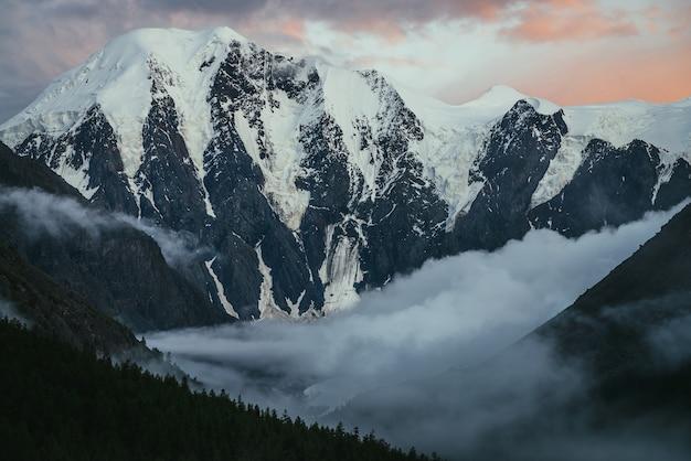 Klimatyczny krajobraz alpejski z sylwetkami drzew na tle wielkich ośnieżonych gór i niskich chmur w dolinie pod zachmurzonym niebem fioletowy pomarańczowy świt. niesamowity zachód lub wschód słońca górskiej scenerii.