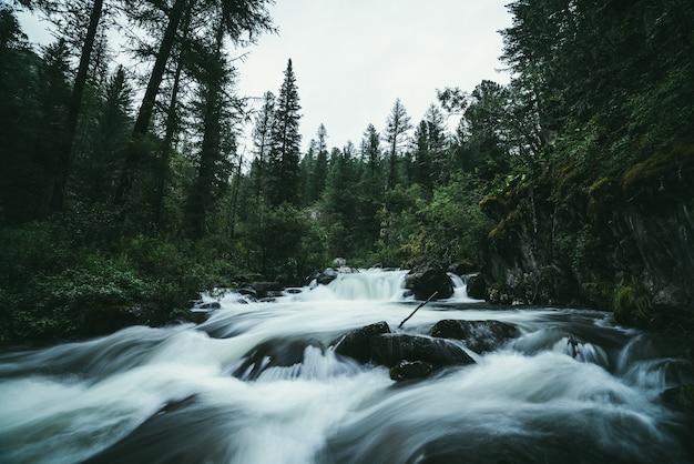 Klimatyczny krajobraz leśny z bystrzami na potężnej górskiej rzece pomiędzy skałami z mchami, drzewami i dziką roślinnością. duże omszałe głazy w niewyraźne potok burzliwej wody w górskiej rzece.