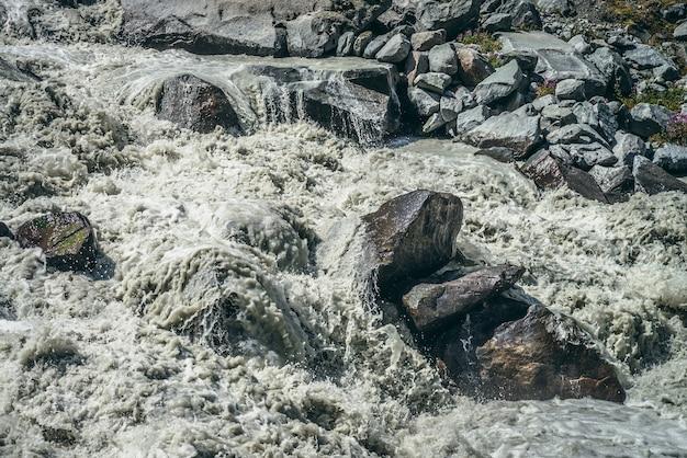 Klimatyczny krajobraz z potężnymi bystrzami wzburzonej górskiej rzeki z szarą wodą wśród wielkich głazów. piękna sceneria z rwącą górską rzeką na morenach i małymi różowymi kwiatkami wśród kamieni.