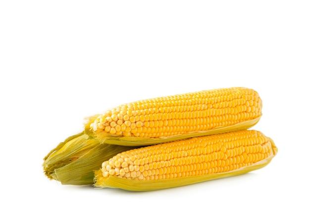 Kłos kukurydzy na białym tle. widok z góry