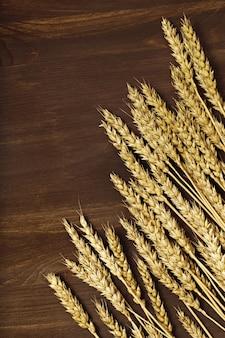 Kłosy pszenicy i ziarna na ciemnobrązowym drewnianym