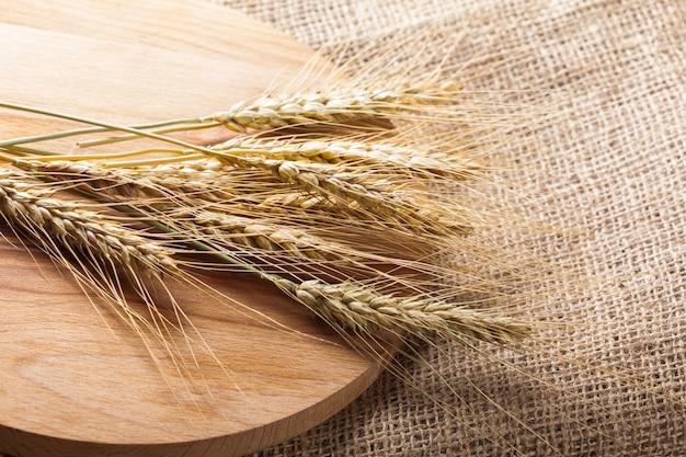 Kłosy pszenicy na worze