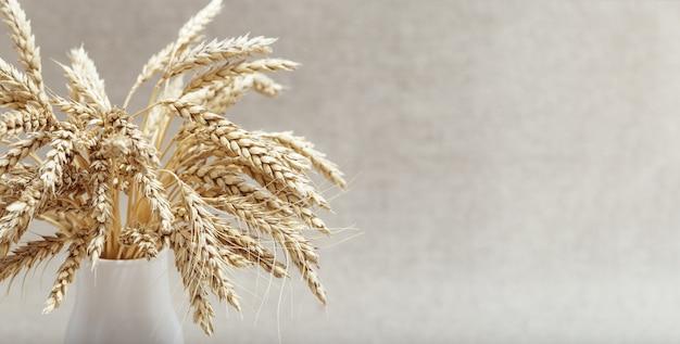 Kłosy pszenicy z bliska w małej białej wazonie. pojęcie czasu zbiorów. rośliny zbożowe obraz monochromatyczny martwa.