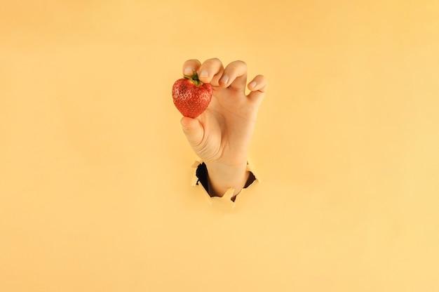 Kobieca ręka w podartym jasnożółtym tle papieru trzyma dojrzałe truskawki
