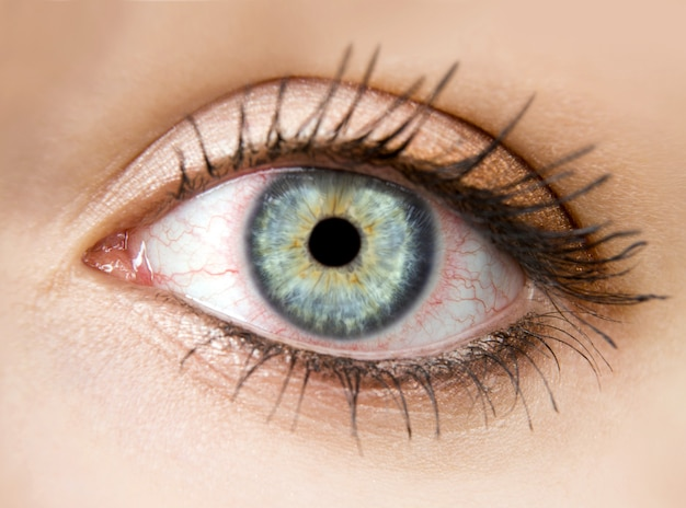 Kobiece oko z czerwonymi naczyniami krwionośnymi