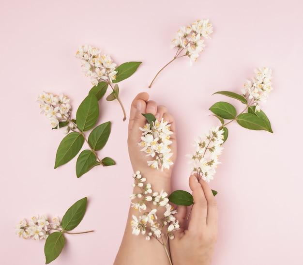 Kobiece ręce i różowe małe białe kwiaty