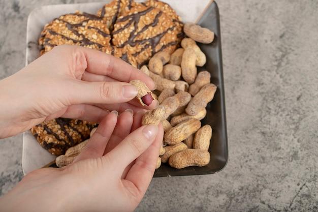 Kobiece ręce zbierając organiczne jądra orzechów ziemnych na powierzchni kamienia.