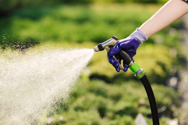 Kobiecej ręki z wężem ogrodowym podlewania roślin, koncepcja ogrodnictwo.
