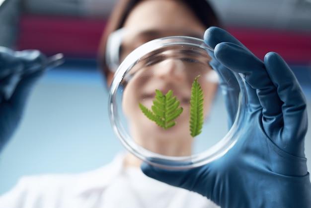 Kobieta biolog naukowiec badania diagnostyka biologia nauka