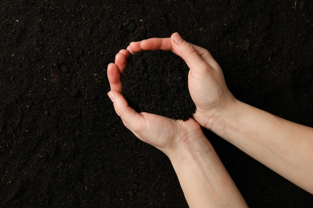 Kobieta chwyta ziemia na glebowym tle, odgórny widok